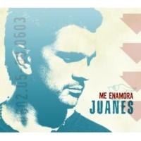 Juanes Un Día Normal [Album Version]