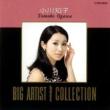 小川知子 BIG ARTIST BEST COLLECTION/小川知子