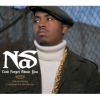 NAS Can't Forget About You(Album Version (Explicit))
