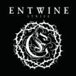 Entwine The Strife