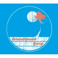 Bloodhound Gang Screwing You On The Beach At Night [Album Version (Explicit)]