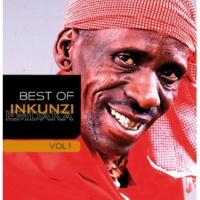 Inkunzi Emdaka Somandla [Album Version]