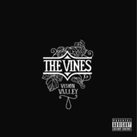 The Vines Dope Train