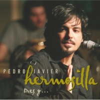 Pedro Javier Hermosilla Un Agujero En El Alma (Don't Dream It's Over) [Live]