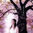 より子 忘れられた桜の木