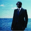 Akon/Sweet Rush Troublemaker (feat.Sweet Rush)