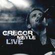 Gregor Meyle So soll es sein [Live]