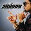 Shaggy The Boombastic Collection - Best Of Shaggy [International Version]