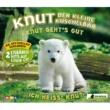 Knut, der kleine Kuschelbar Knut geht's gut [2-Track]