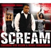 Timbaland Scream(Instrumental)