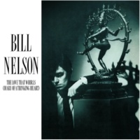 Bill Nelson Empire Of The Senses