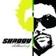 Shaggy/Olivia Wild 2Nite (feat.Olivia) [Album Version]