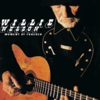 ウィリー・ネルソン TAKIN' ON WATER - ALBUM VERSION