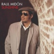 Raúl Midón Sunshine (I Can Fly) (Radio Edit)