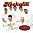 Nockalm Quintett Amadeus In Love