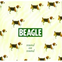 Beagle Suit Of Armour