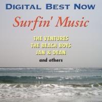 The Beach Boys キャッチ・ア・ウェイヴ (Digitally Remastered 00)