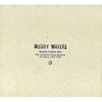 Muddy Waters Flood