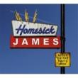 Homesick James Blues On The South Side(International Version)