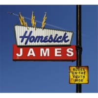 Homesick James The Cloud Is Crying(Album Version)