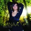 Sanaa Terre Mère [Radio Edit]
