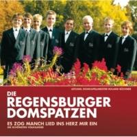 Die Regensburger Domspatzen Zufriedenheit (Ich bin vergnügt, was will ich mehr?)