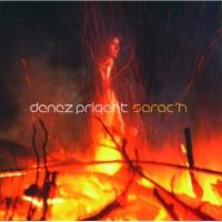 Denez Prigent Sarac'H [Album Version]