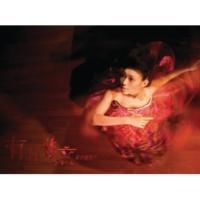 You Er Fei Wen Luan Jiao Cha Lai [Album Version]