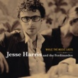 Jesse Harris While The Music Lasts