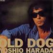 原田芳雄 OLD DOG