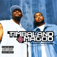 Timbaland & Magoo Indian Carpet