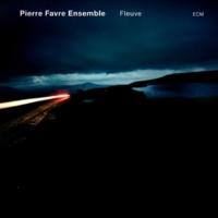Pierre Favre Ensemble パナマ