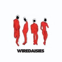 Wire Daisies Gay Boy