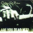 Children Of Bodom In Your Face [Album Version]