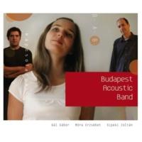 Budapest Acoustic Band A Duna Partjan