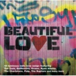 Various Artists Beautiful Love:The Indie Love Songs Collection