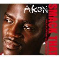 Miri Ben-Ari/Akon Miss Melody (feat.Akon)