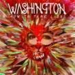 Washington How To Tame Lions
