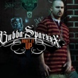 Bubba Sparxxx Heat It Up