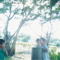 初恋の嵐 涙の旅路(SLTS.Ver) [SLTS. Ver]