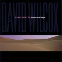 David Wilcox Tear Out Your Heart