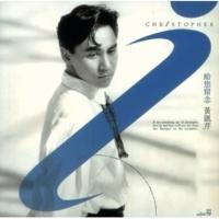 Christopher Wong Mei Jie Guo Di Yi Xie Gan Qing [Album Version]