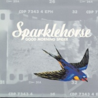 Sparklehorse Come On In