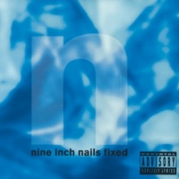 Nine Inch Nails Screaming Slave