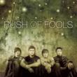 Rush Of Fools Rush Of Fools