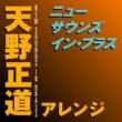 岩井直溥 ニュー・サウンズ・イン・ブラス 天野正道アレンジ