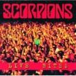 Scorpions Live Bites