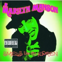 Marilyn Manson Sweet Dreams (Are Made Of This) [Album Version]