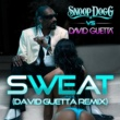 Snoop Dogg vs. David Guetta Sweat/Wet
