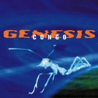 Genesis The Banjo Man